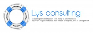 Lys consulting